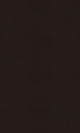 3100_Jet-Black_Full_Slab-275X454